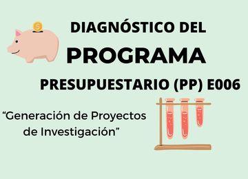 PP E006