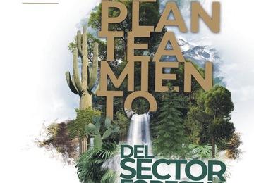 Tríptico información sobre las consultas para el replanteamiento del sector forestal