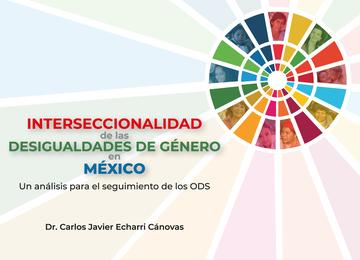Imagen de la portada de la publicación Interseccionalidad de las desigualdades de género en México. Un análisis para el seguimiento de los ODS.
