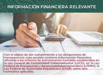 Información Financiera Relevante