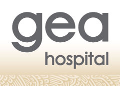 "Logotipo Hospital General ""Dr. Manuel Gea González"""
