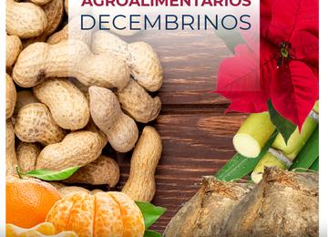 Productos Agroalimentarios Decembrinos
