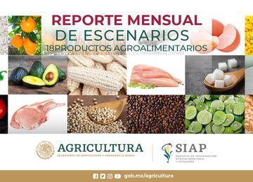 Reporte mensual de escenarios de 18 productos agroalimentarios del comportamiento de la producción y comercio exterior mexicano.