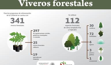 Yo planto mi futuro campa a for Viveros forestales conafor