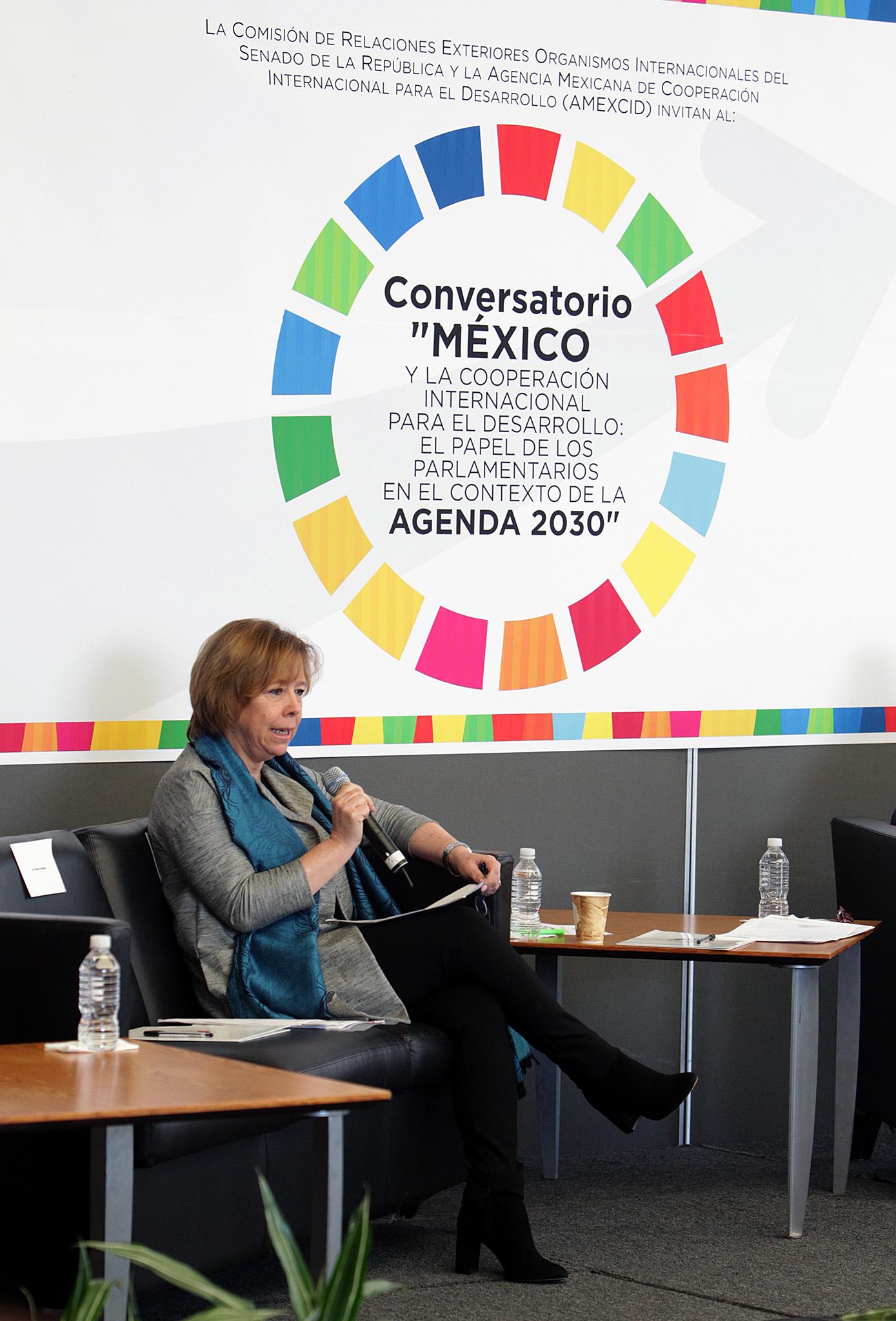 Conversatorio M Xico Y La Cooperaci N Internacional Para El Desarrollo Secretar A De