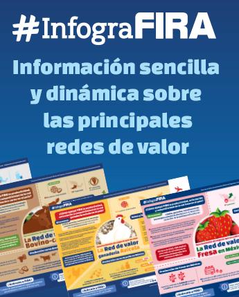 InfograFIRA, información sobre las principales redes de valor