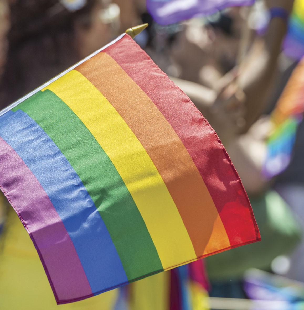 Dia contra homofobia  6