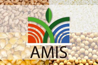 Novena Sesión del Sistema de Información de Mercados Agrícolas (AMIS)