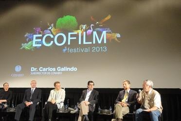 EcoFilm Festival 2013, espacio de exhibición de problemas medioambientales más significativos de la actualidad.