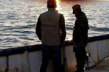 Redobla PROFEPA inspección y vigilancia para la Vaquita Marina