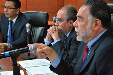 Comité Nacional de Guías de Práctica Clínica