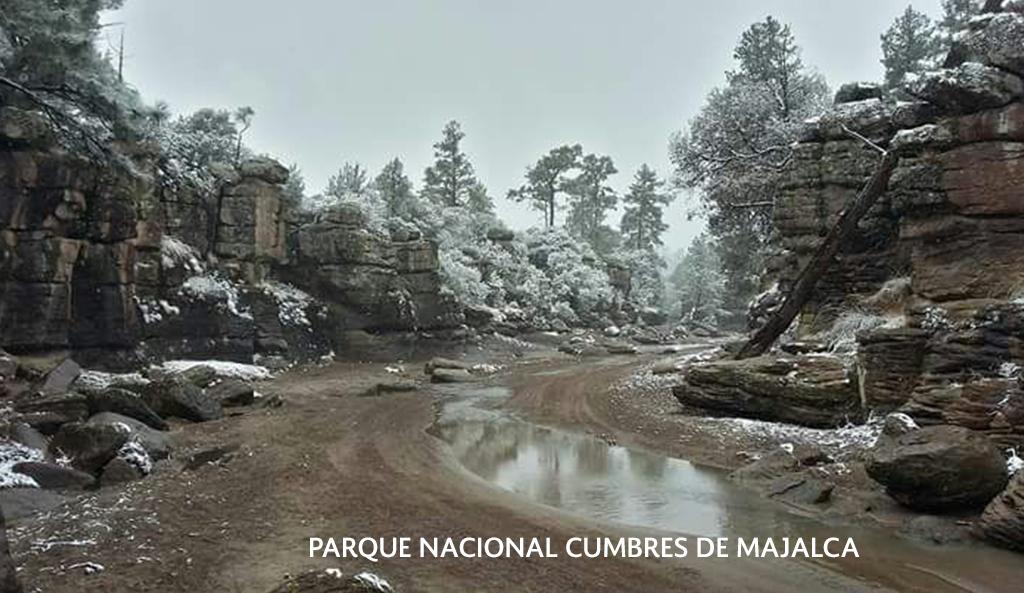 20 Áreas Naturales Protegidas (ANP) y 2 Regiones Prioritarias para la Conservación presentan nevadas con paisajes únicos