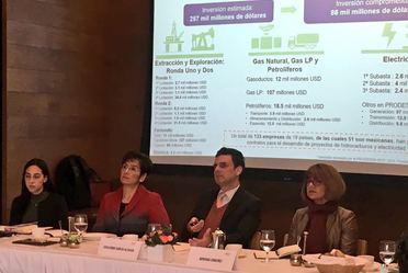 Comité de Energía del Instituto Mexicano de Ejecutivos de Finanzas