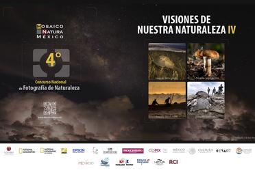 Finalistas del 4to. Concurso Nacional de Fotografía de Naturaleza. Mosaico Natura