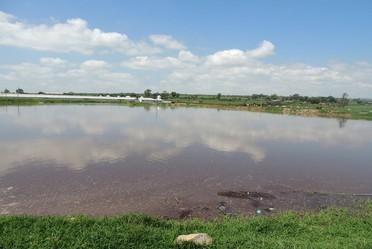 El INIFAP promueve una alternativa para el tratamiento de aguas residuales