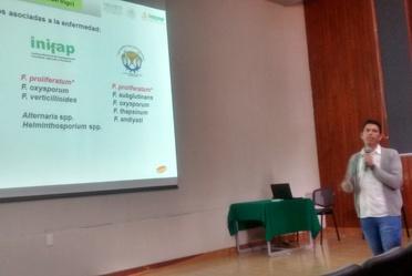 INIFAP imparte seminario Programa de trigo en la región centro de México Situación actual y perspectivas