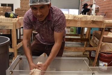 producción de popotes biodegradables