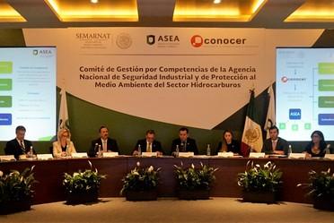 Consejo Consultivo reunido para dar a conocer los Estándares de Competencia.