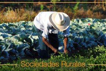 ¿Qué son las Sociedades Rurales?