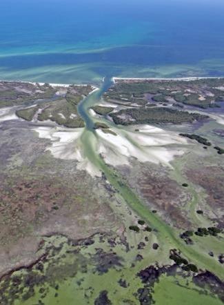 Con esta publicación se busca evitar el impacto ambiental, la contaminación y asentamientos irregulares que afectan a esta Área Natural Protegida