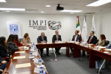 IMPI UNAM