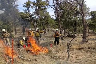 Grupo de combatientes en EEUU realizando prácticas de quema controlada.