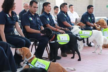 La Generación 22 de la Escuela de Perros del SENASICA, recibe reconocimiento por la DGIF y OISA