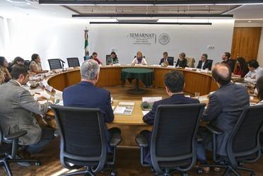 Se reúne la Titular de la Semarnat con el Director General del Instituto Global para el Crecimiento Verde.
