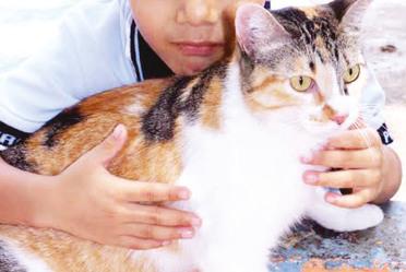 Niño con mascota.