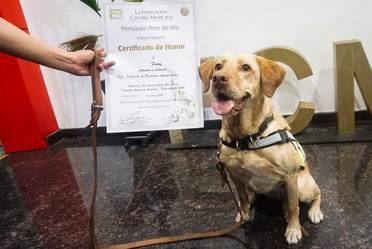 Unidades Caninas del Senasica recibieron reconocimiento por su destacada labor en inspección de mercancías agropecuarias