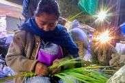 Small gerardo coloxtitla nava semana santa nahuas morelos 20190414 060226907