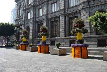 Festival de las Flores, Centro Histórico, Ciudad de México.