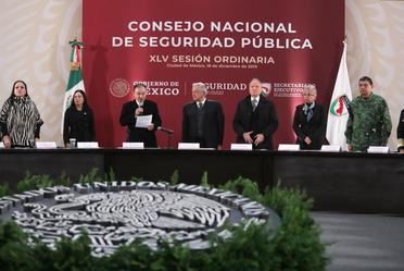 XLV Sesión Ordinaria del Consejo Nacional de Seguridad Pública (CNSP)
