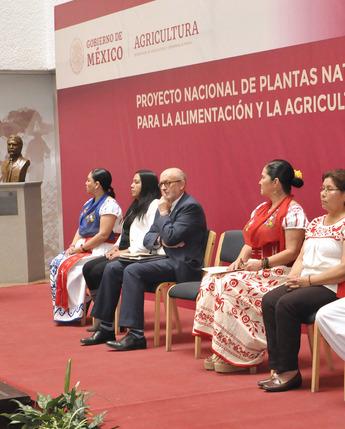 Proyecto Nacional de Planta Nativas para la Alimentación y la Agricultura: Vainilla