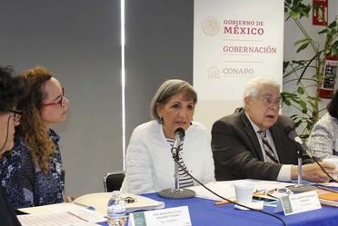 Primera sesión del Comité Técnico Especializado de Población y Dinámica Demográfica (CTEPDD), 2020.