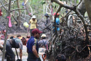 Fotografía que recibió mención honorífica en la categoría acciones forestales