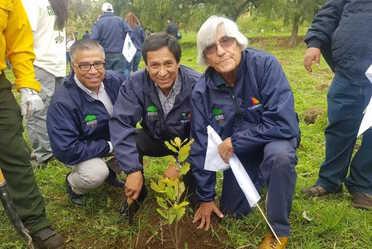 """Dio inicio la campaña """"Un Nuevo Bosque 2020"""" impulsada por Azteca Noticias, Grupo Salinas y #Conafor, campaña que contribuye a la reforestación y mantenimiento de áreas forestales en todo el país."""