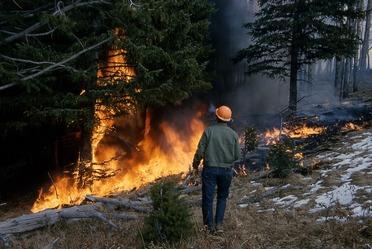 Importancia de la participación ciudadana libre, efectiva, significativa y corresponsable (Incendios forestales)