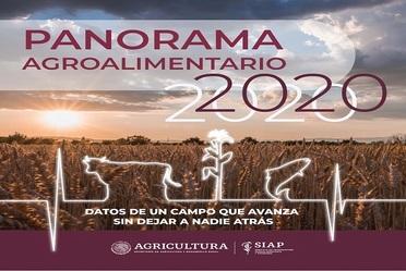 Panorama Agroalimentario 2020