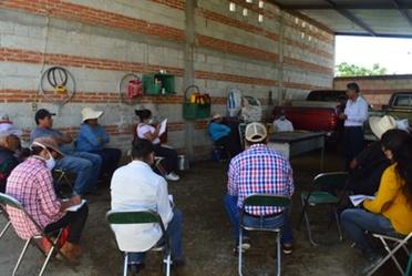 El Colegio de Postgraduados (Colpos) trabaja en el desarrollo de la agricultura familiar, específicamente en la cadena de valor del aguacate, amaranto, frutales caducifolios, ganadería familiar, frutillas, maíz, soya y producción de abonos e insecticidas