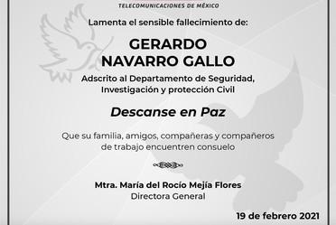 squela para Gerardo Navarro Gallo