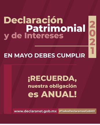 Declaración patrimonial 2021