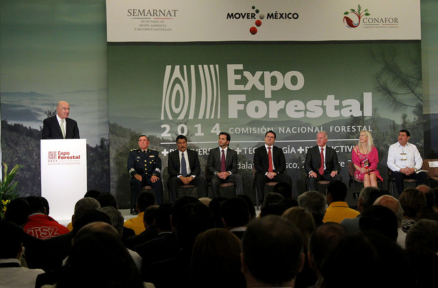 Expo forestal 2014 1