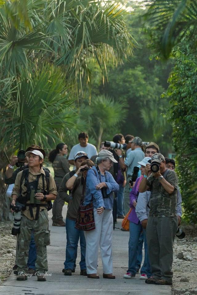 Durante los recorridos de observaci n se registraron en la comunidad de San Gervasio 40 especies  en el caso de Punta Sur  29 especies y el Cozumel Country Club tuvo un registro de 58 especiesjpg
