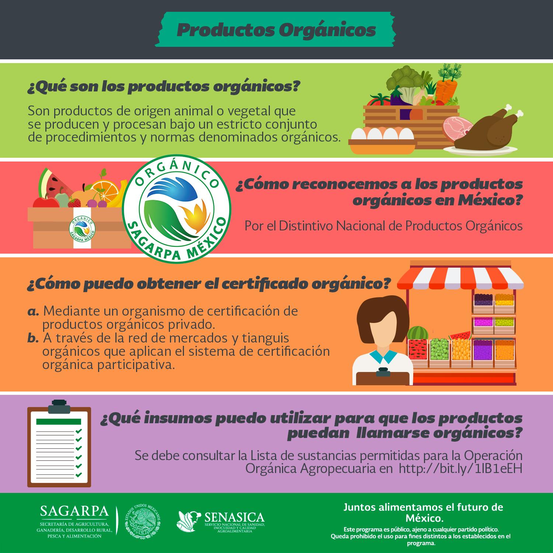 Sanidad inocuidad y calidad de alimentos informacion review ebooks rol y examen preocupacional - Preguntas examen manipulador de alimentos ...