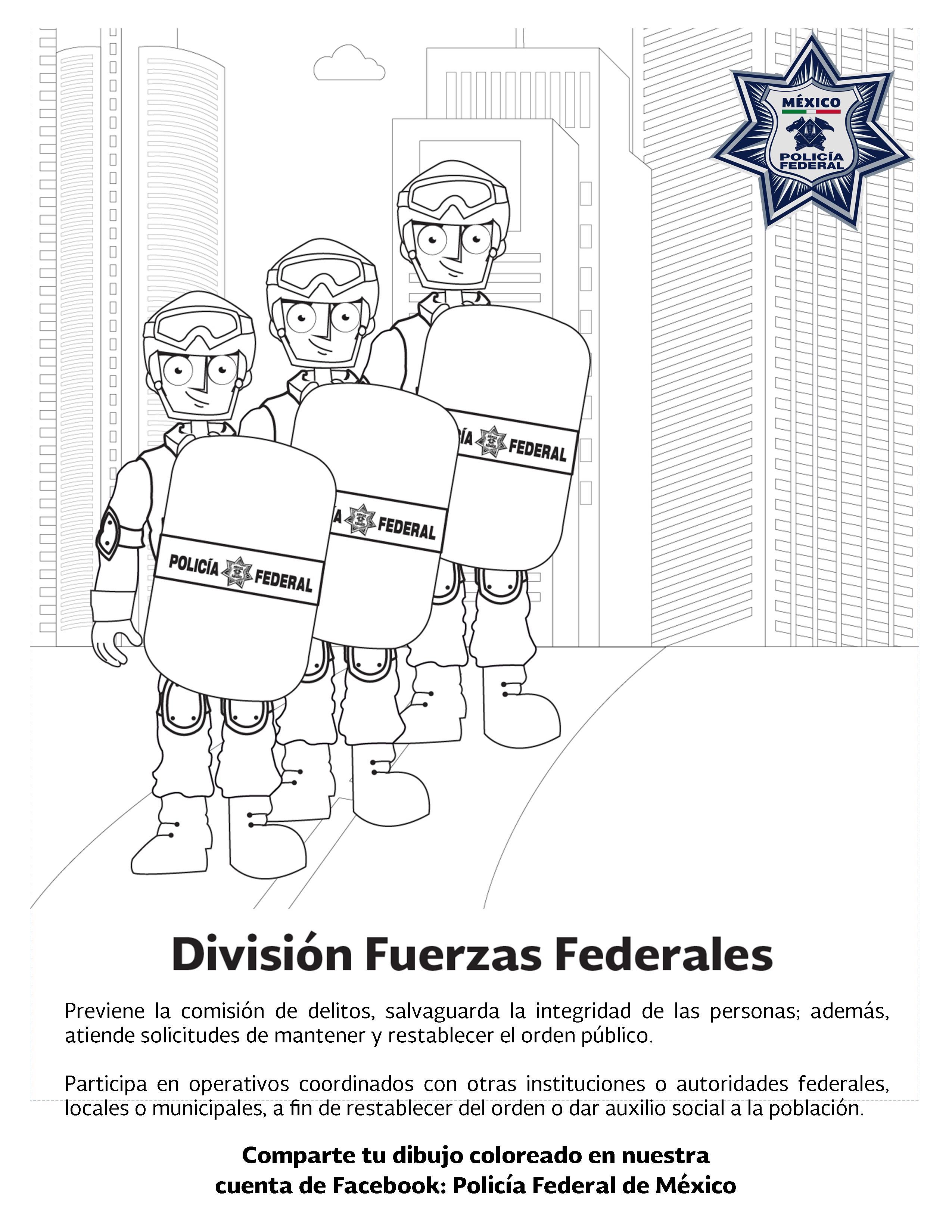 Conoce y colorea las siete Divisiones de la Policía Federal ...