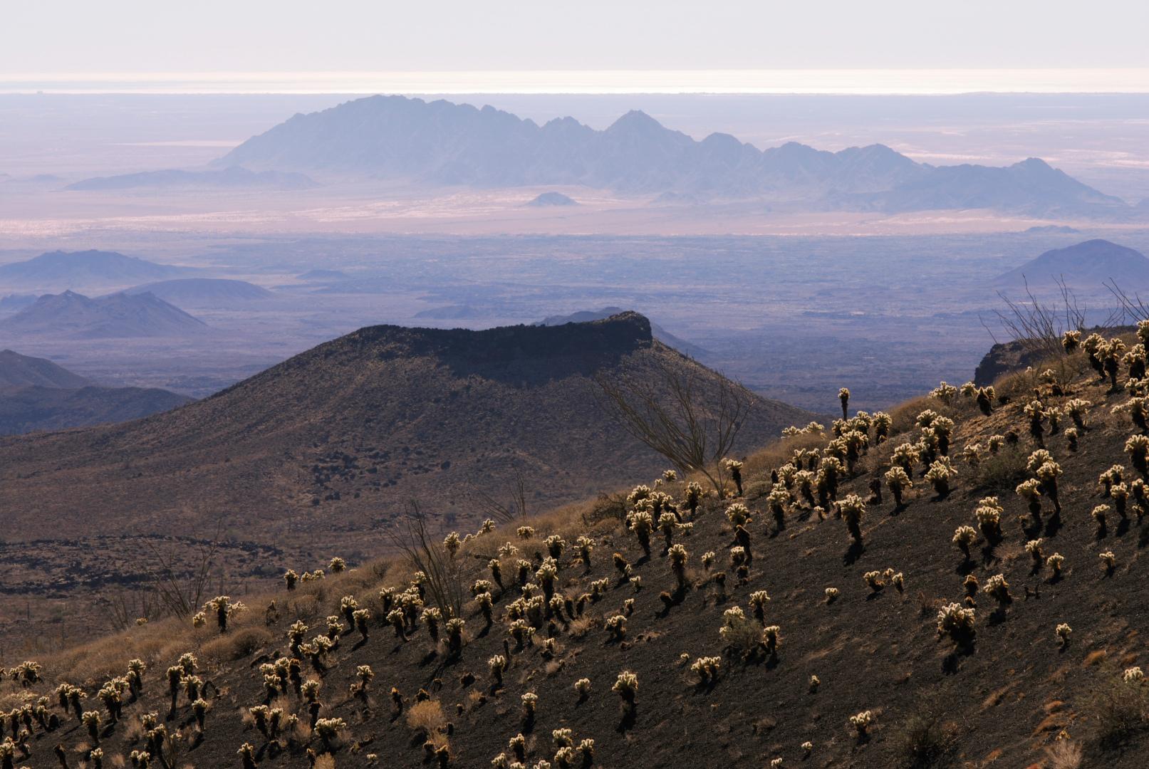 vista de el Pinacate