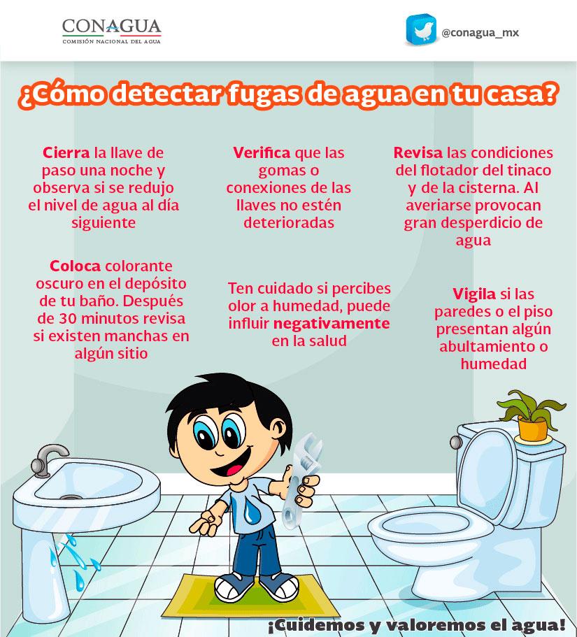 Tips para el cuidado del agua comisi n nacional del agua for Actividades que se realizan en una oficina wikipedia
