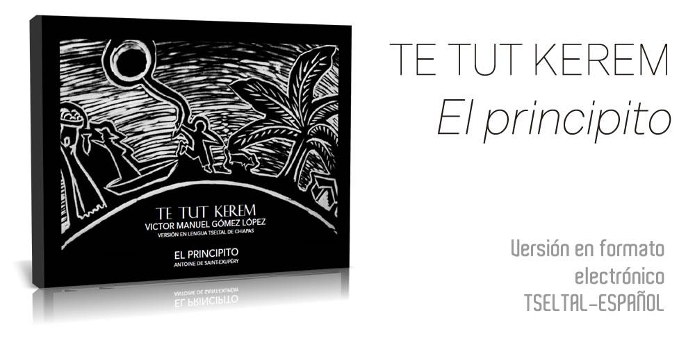 """El Principito"" Se Traduce A La Lengua Tseltal De Chiapas"