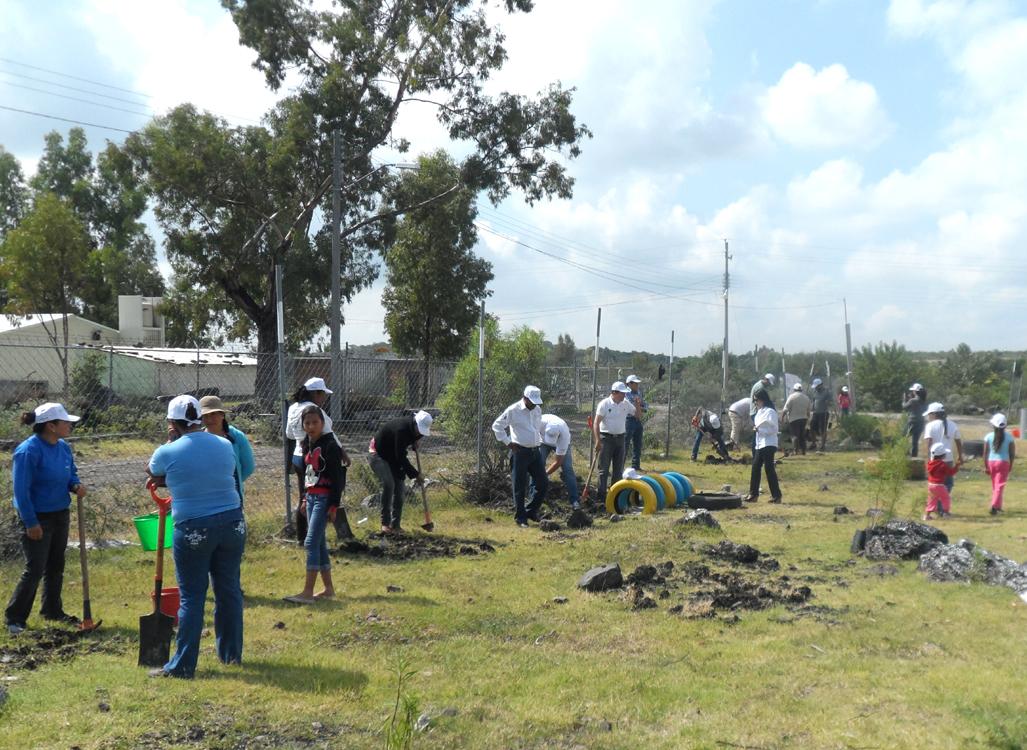 Plantar n 3 millones de rboles en quer taro con campa a for Viveros en queretaro
